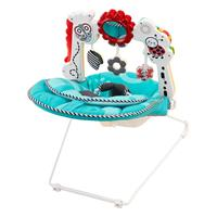 Fisher Price 2 in 1 Sensory Stages Wippe Detaillierte Ansicht 02