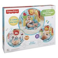 Fisher Price 2 in 1 Sensory Stages Wippe Ansichtsdetail 03