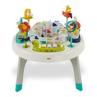 Fisher Price 2-in-1 Activity Spielcenter