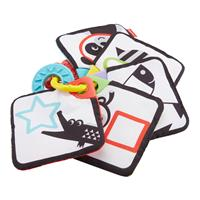Fisher-Price Babys Knisterkarten GFX90