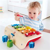 Hape Spielzeug Mein erstes Xylophone & Piano