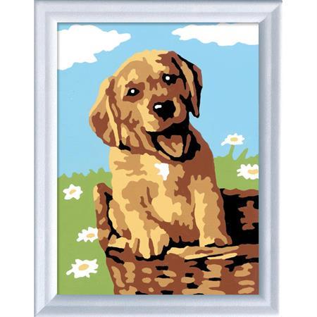 Ravensburger Malen nach Zahlen Serie F Hund im Korb
