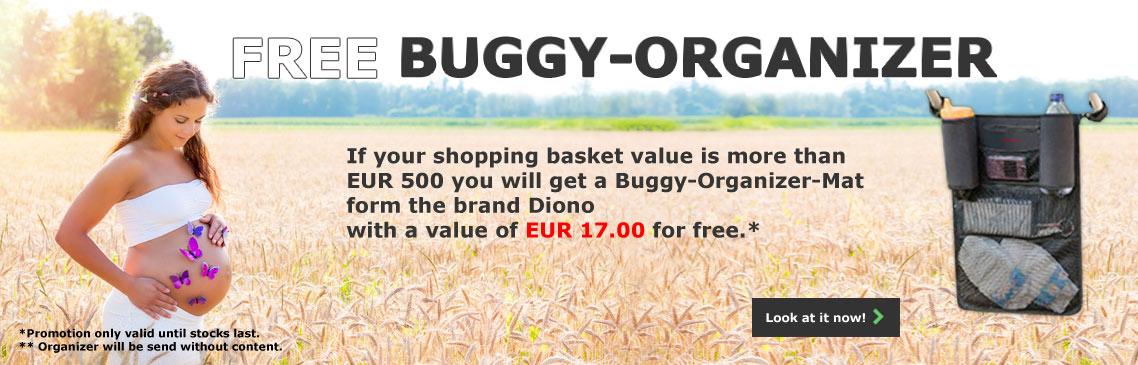 Free Diono Buggy Organizer Mate Mat